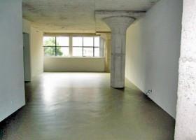 Pioneer Warehouse Lofts - Unit 202
